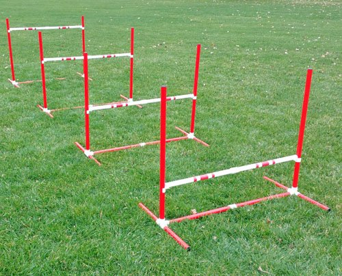 Red TRAVEL Jump Set by Affordable Agility
