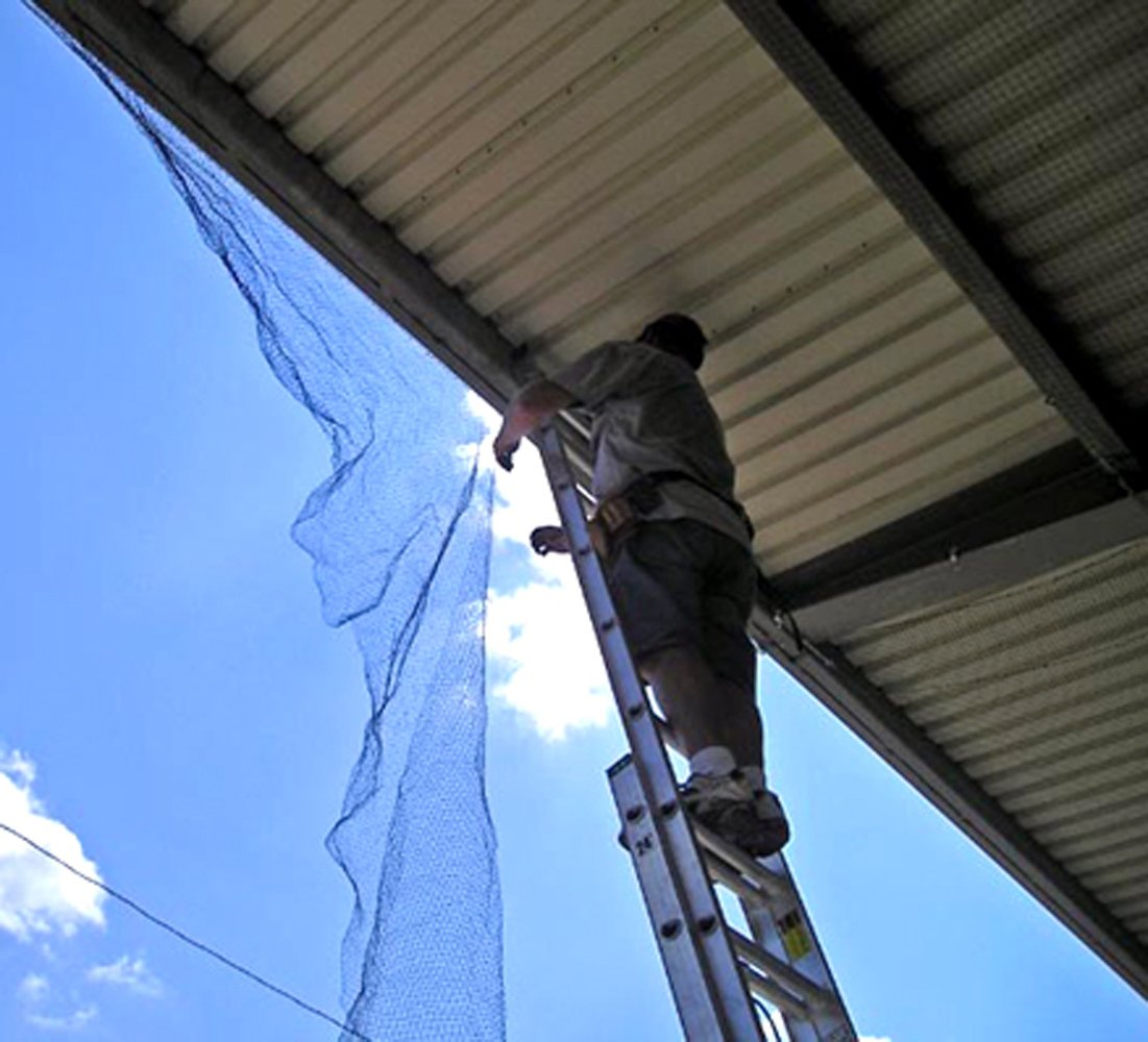 Bird-X Structural Bird Netting Ideal for Gardens and Medium-Weight Applications, 100' by 14' by Bird-X (Image #3)