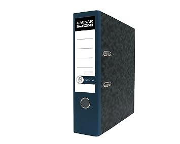 Ejecutiva Profesional de papel (A4 polipropileno archivadores de cartón - azul (Pack de 20): Amazon.es: Oficina y papelería
