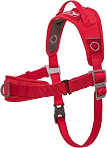 Kurgo Dog Harness | No Pull Training Pet Walking Harness | Harnesses for Dogs Or Pets | Adjustable | Reflective | Easy Control | Front D-Ring Clip | Walk About Training Harness | Red (Medium)