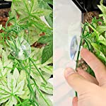 SLSON Reptile Plants Hanging Terrarium Plants Fake Reptiles Climbing Plant for Bearded Dragons,Lizards,Geckos,Snake Pets and Hermit Crab Tank Habitat Decorations,Large Size,20 inches 11