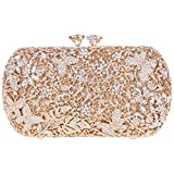 Bonjanvye Floret Kiss Lock Butterfly Clutch Chain Purse Crystal Clutch Evening Bag