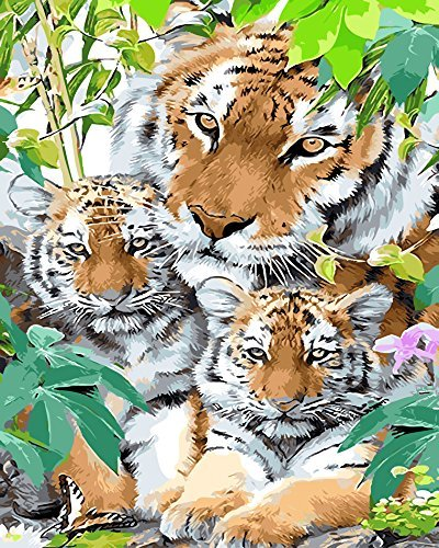 (Fandim Fly Paint by Numbers DIY Oil Painting Kit Tiger father and Tiger Aberdeens (Wooden Framed) 16x20inch)