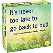Unspirational 2019 Day-to-Day Calendar: it's never too late to go back to bed