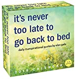img - for Unspirational 2019 Day-to-Day Calendar: it's never too late to go back to bed book / textbook / text book