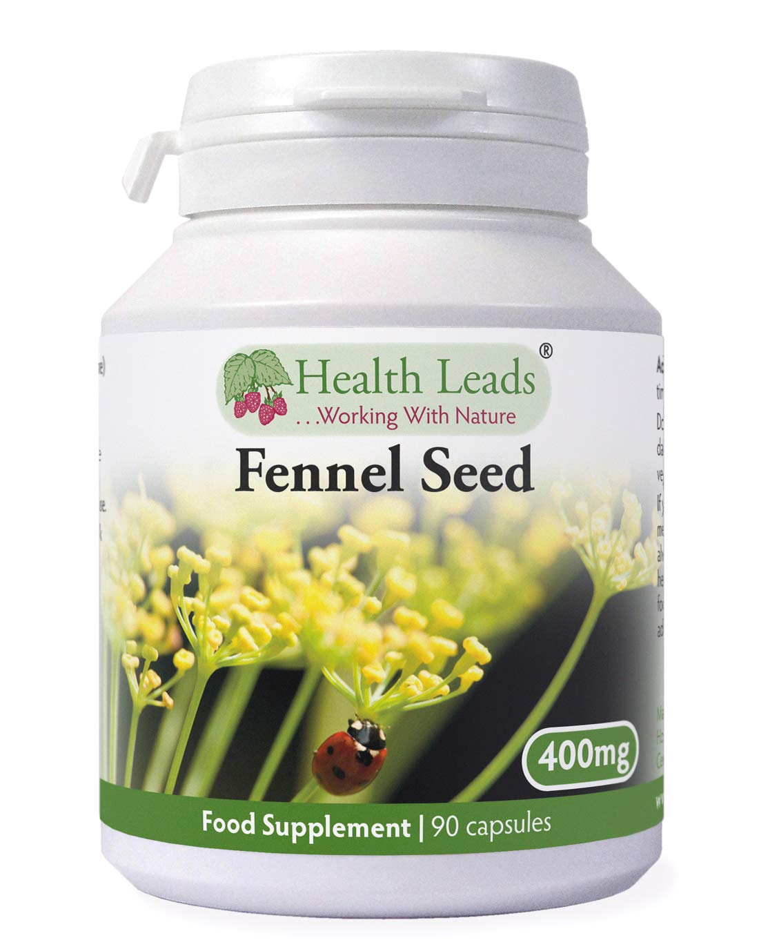Fennel Seed 400mg x 90 Capsules (100% Additive Free Supplements)