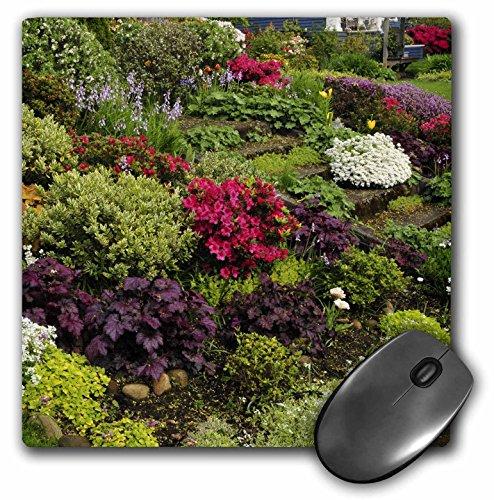 3dRose LLC 8 x 8 x 0.25 Inches Mouse Pad, Oregon, Tulips, Azaleas, Phlox, Candytuft Flowers, Jaynes Gallery - Bell Flower Tulip