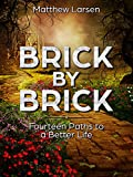 Brick By Brick: Fourteen Paths to a Better Life (How to Win at Life Book 1)