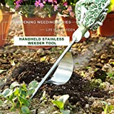 Homes Garden Hand Weeder Stainless Manual Weed