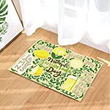 GoHeBe Summer Fruit Bath Rugs Fresh Lemon Greenery Iced Lemonade Beige Background Non-Slip Doormat Floor Entryways Indoor Front Door Mat Kids Bath Mat 15.7x23.6in Bathroom Accessories