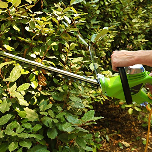 Greenworks 22-Inch 4-Amp Corded Hedge Trimmer 2200102 Renewed