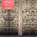 Back40Life | Loved Beyond Measure - 60'' Premium Wooden Growth Chart Ruler (Weathered Natural)