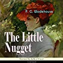 The Little Nugget Audiobook by P. G. Wodehouse Narrated by Arthur Vincet