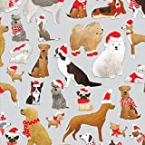 Jillson Roberts 6 Roll-Count Whimsical Winter Christmas Gift Wrap Available in 7 Designs, Santa's Furry Helpers