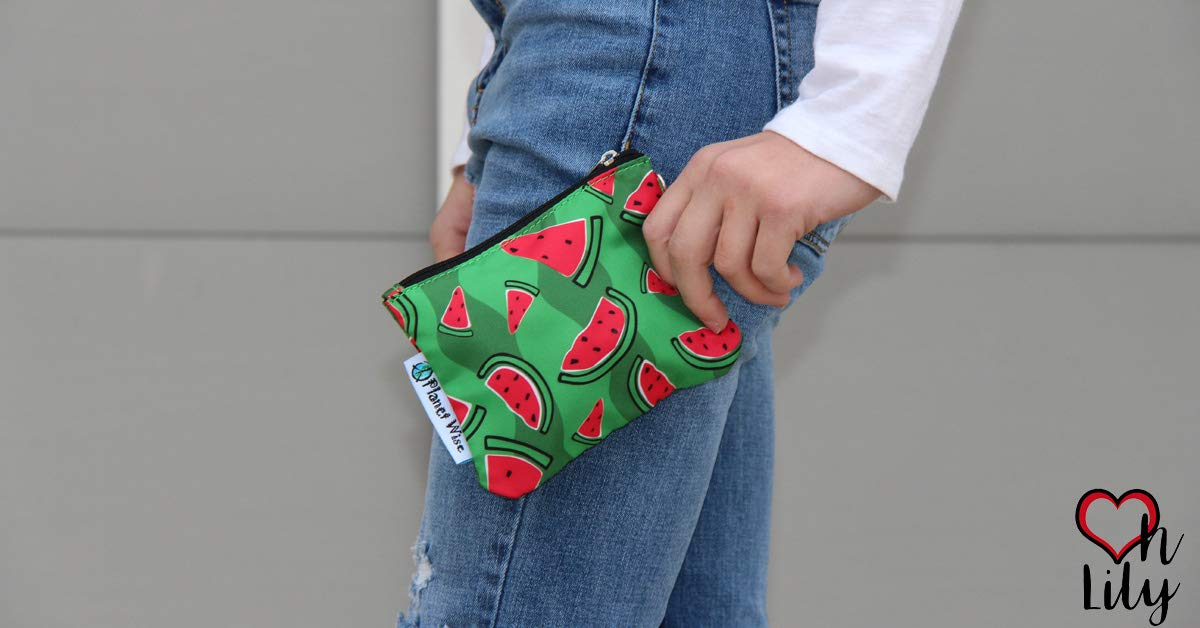 Planet Wise Travel Oh Lily Coin Purse Watermelon Patch