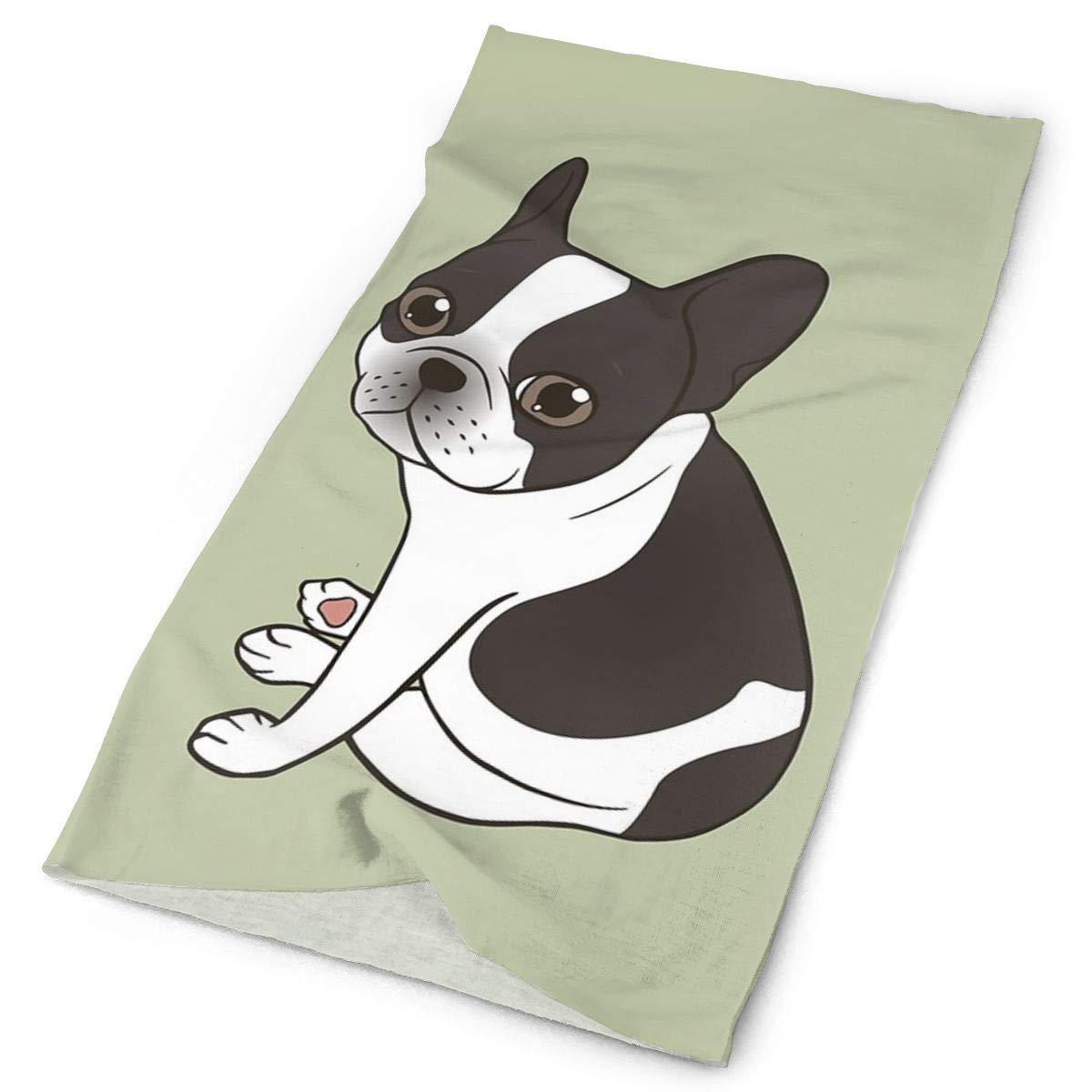 Zara-Decor Pasamontañas con capucha y diseño de bulldog francés ...