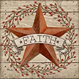 Ideal Home Range 20 Count Faith Barn Star Paper Luncheon Napkins
