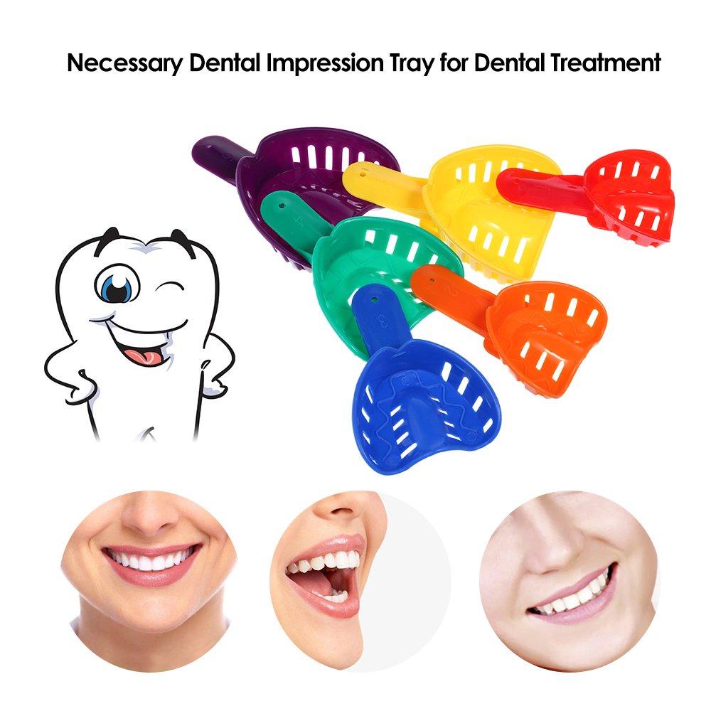 Anself 12pcs Bandejas Molde Modelo de Impresiión Dental: Amazon.es: Salud y cuidado personal
