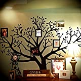 Huge Family Picture Tree Wall Decal Country Home Style Decor Wall Art