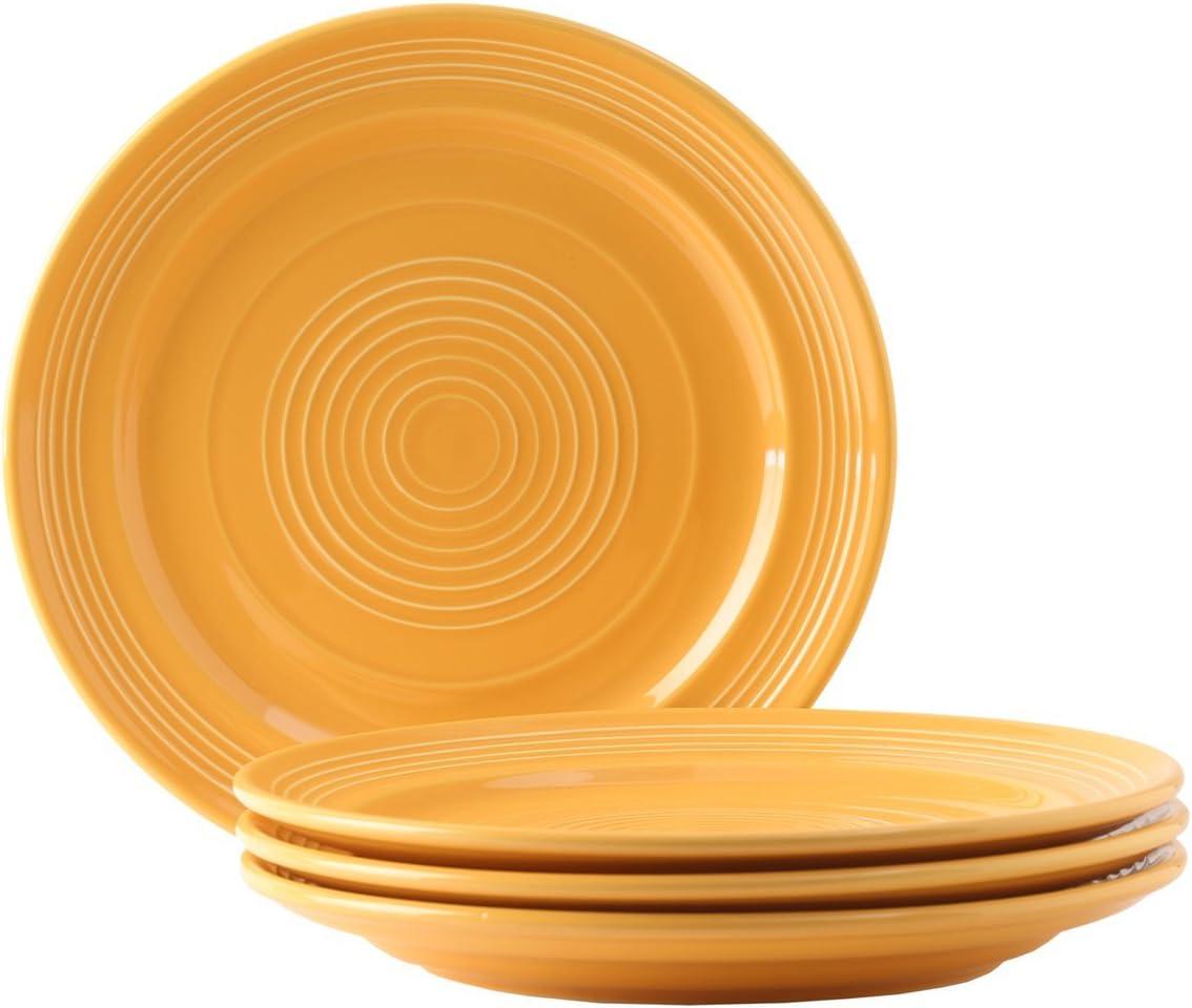 Tuxton Home Concentrix Dinner Plate (Set of 4), 10 1/2