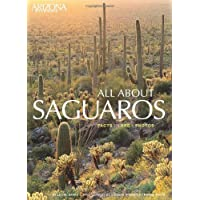 All about Saguaros: Facts/Lore/Photos