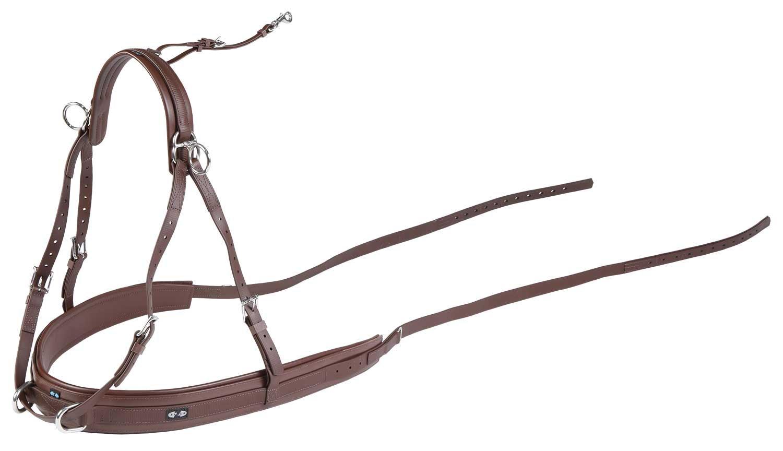 Elliotst Klettergurt Duke Airtech : Zilco brun geschirr & trace combo cob größe: amazon.de: sport