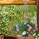 eBoot 4 Pieces Plant Hanger Flower Pot Plant Holder with Key Ring for Indoor Outdoor Decorations, 2 Pieces 41.3 Inches and 2 Pieces 35 Inches, 4 Legs
