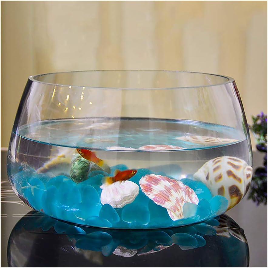 XJG - Mini acuario de cristal para peces, bola redonda redonda pequeña tortuga, 1 galón, cristal transparente, piedra azul hidropónico, diámetro de 30 cm