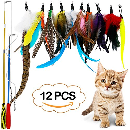 Cat Wand Teaser (B Bascolor Retractable Cat Toys Interactive Feather Teaser Wand Toy with 2 Poles 10 Attachments Worm Birds Feathers for Kitten Cats)