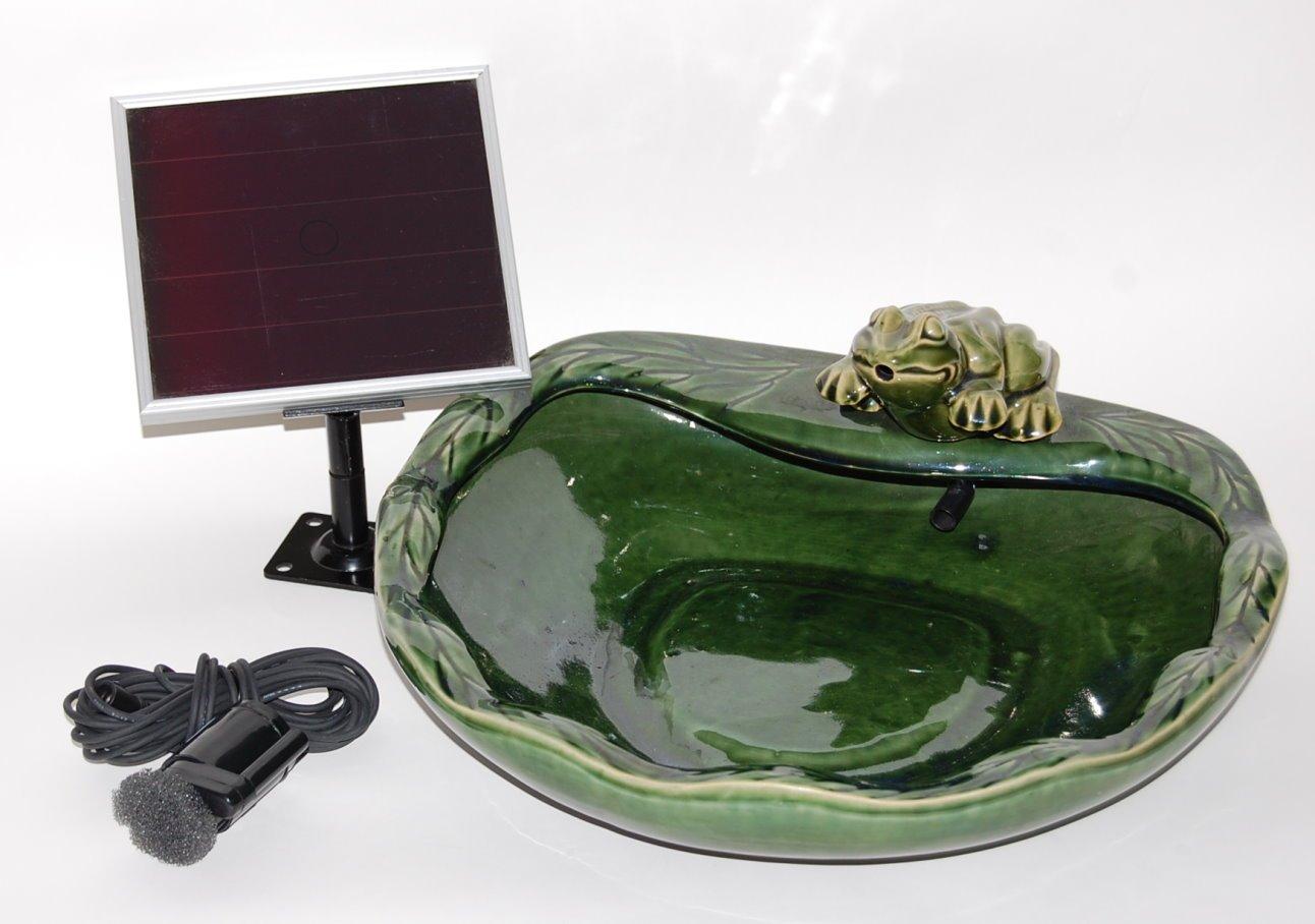SmartSolar SPT Frosch: Amazon.de: Garten