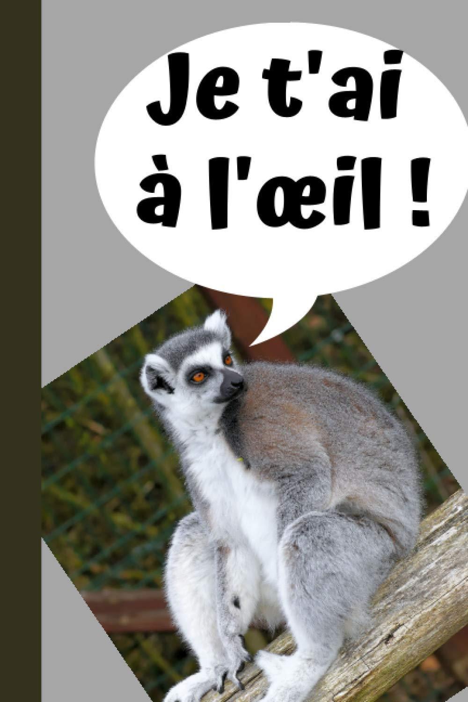 Je T Ai A L œil Carnet Rigolo Marrant Drole Citation Original Humour Je T Ai A L œil 100 Pages Lignees A Remplir Format 6 9 Pouces Carnet Animal Lemur French Edition Leveil