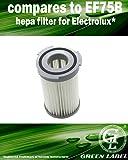 Filtro HEPA a cartuccia per gli aspirapolvere Electrolux (alternativa a EF75B, 9001959494)