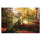 Startonight Canvas Wall Art Autumn Sun Rays, Dual View Surprise Artwork Modern Framed Ready to Hang Wall Art 100% Original Art Painting 31.5 x 47.2 inch