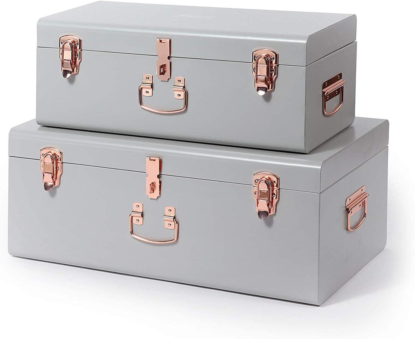 Metal Box Organizers Blush Pink//Pink 2 Piece Trunk Set Accent Storage Chests