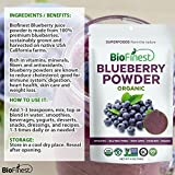 Biofinest Wild Blueberry Juice Powder - 100% Pure