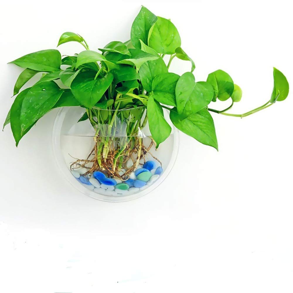 Wansan Creative Acrylic Hanging Wall Mount Fish Tank Bowl Vase Aquarium Plant Pot Bowl Bubble Aquarium Decor