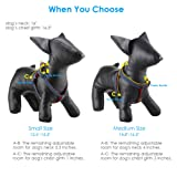 URPOWER Dog Leash Harness Adjustable & Durable