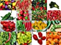 THIS IS A MIX!!! 30+ ORGANICALLY GROWN Hot Pepper Mix Seeds, 16 Varieties Heirloom NON-GMO Habanero, Tabasco, Jalapeno, Thai, Ship from USA