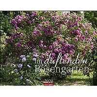 Duftenden Rosengarten 2020 44x34cm