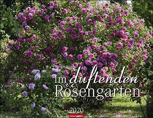 Im Duftenden Rosengarten. Wandkalender 2020. Monatskalendarium. Spiralbindung. Format 44 X 34 Cm