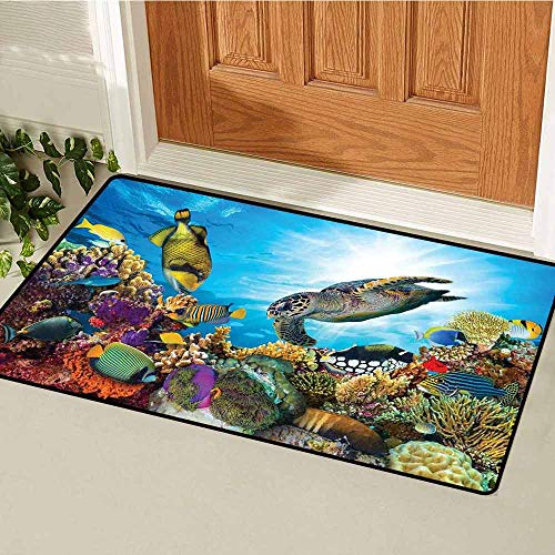 - GloriaJohnson Ocean Front Door mat Carpet Colorful Fishes Hawksbill Floats Under Water Coral Reefs Aquatic Environment Theme Machine Washable Door mat W23.6 x L35.4 Inch Multicolor
