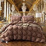 TheFit Paisley Luxury Heavy Weight, W365 Brown Filling Duck Down Comforter Set, for Winter and All Season Handwork 100% Cotton, Twin Queen King Set, 1 Pieces (King)