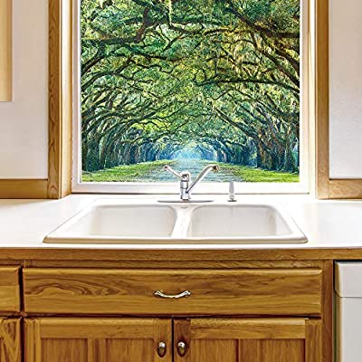 Incredible Work of Art, Window Film for Privacy Large Nature Scenery Decorative Glass Sticker for Office Home Meeting Room Bathroom Self Adhesive Anti UV Removable Flims, Classic Design