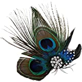 Simplicity Peacock Feather Hair Clip/Fascinator with Rhinestones, Nature
