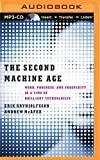 img - for By Erik Brynjolfsson - The Second Machine Age: Work, Progress, and Prosperity in a Time (MP3 Una) (2014-09-17) [MP3 CD] book / textbook / text book