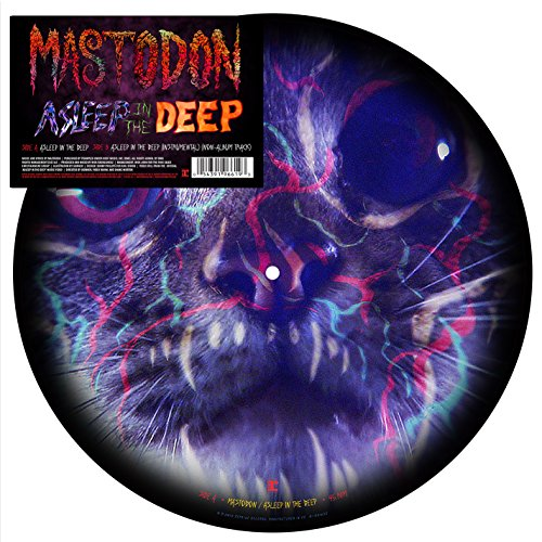 Import 12 Inch Vinyl Disc - Asleep In The Deep (12