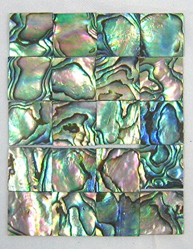 Yuan's 25 Pcs 1.5cm(0.59'') Square. One or Two Side Polished. Hand picked Sea Green Abalone Paua Shell A ()