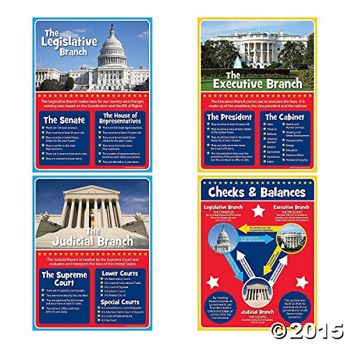 4pc Set of Branches of Government Educational Posters for Children