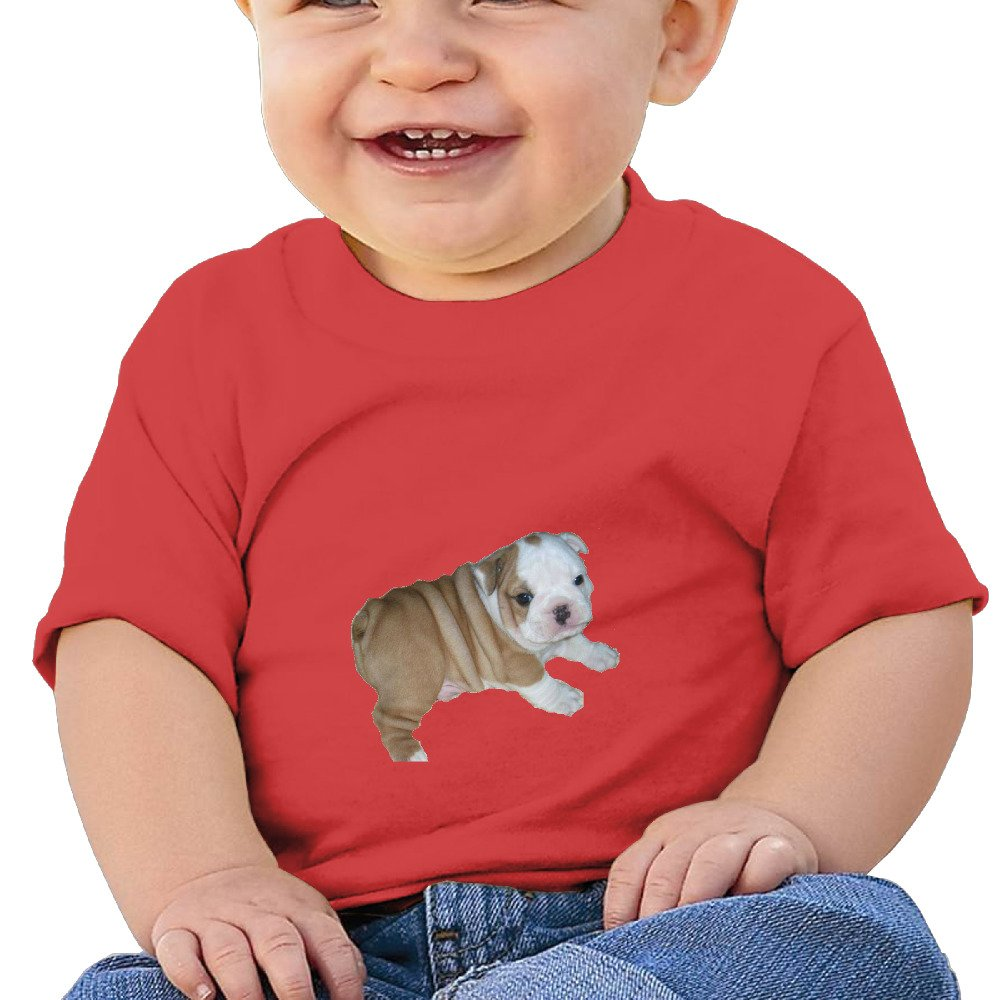 DIMANNU Bulldog Cute Illustration Infants and Toddlers T Shirts Unisex Short Sleeves 6-24 Months