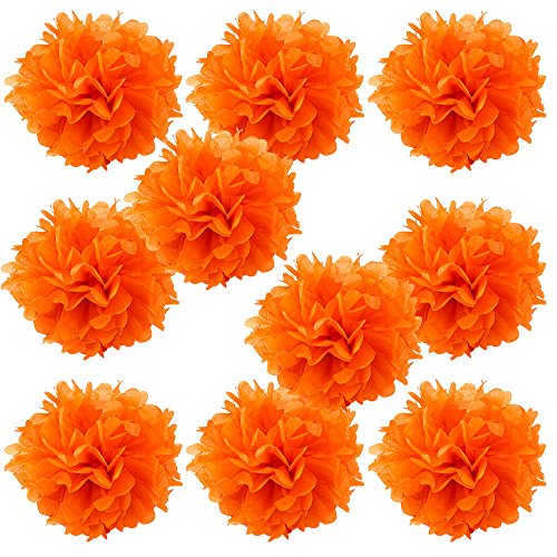 (WYZworks Set of 10 - CORAL 10
